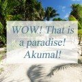WOW! That is a paradise! Akumal!