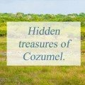 Hidden treasures of Cozumel.