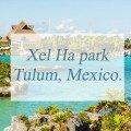Xel Ha park Tulum, Mexico.