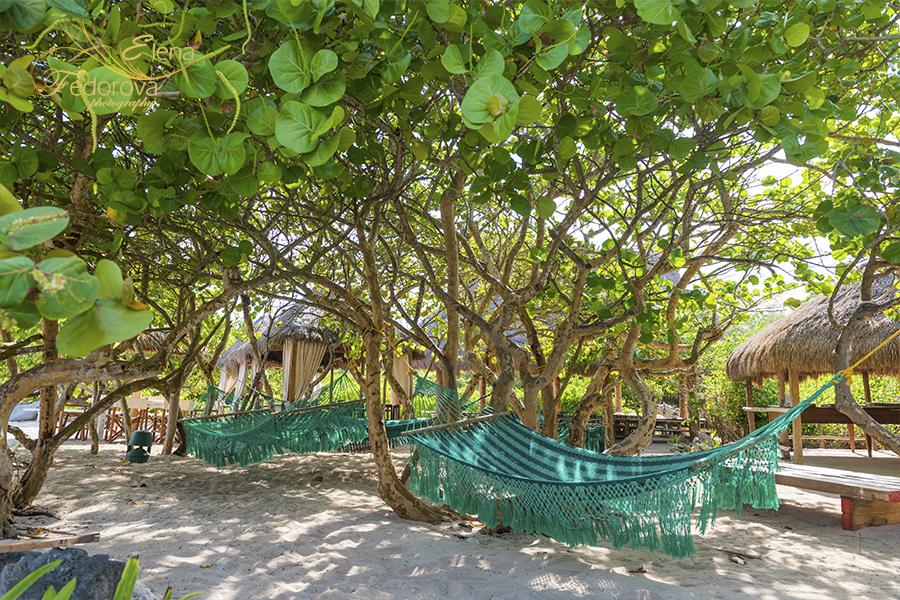 photos of blue venado beach club