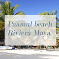 Paamul beach Riviera Maya. The real truth.