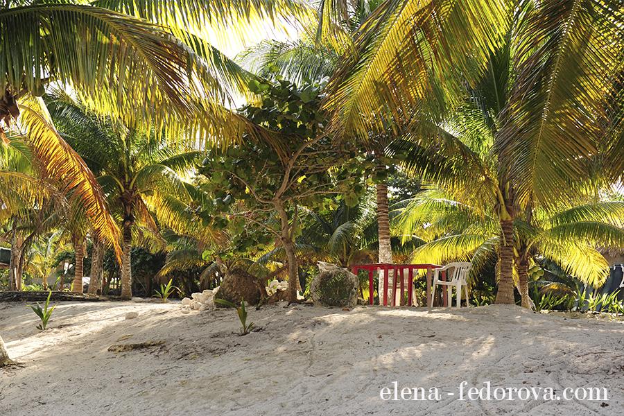 paamul beach riviera maya