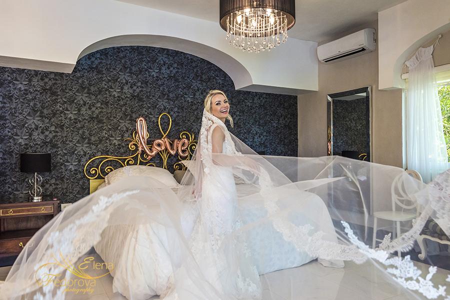 bride portrait veil