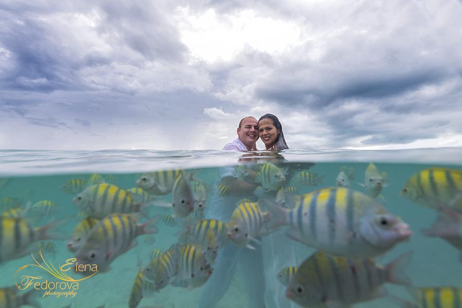 creative underwater photography sea