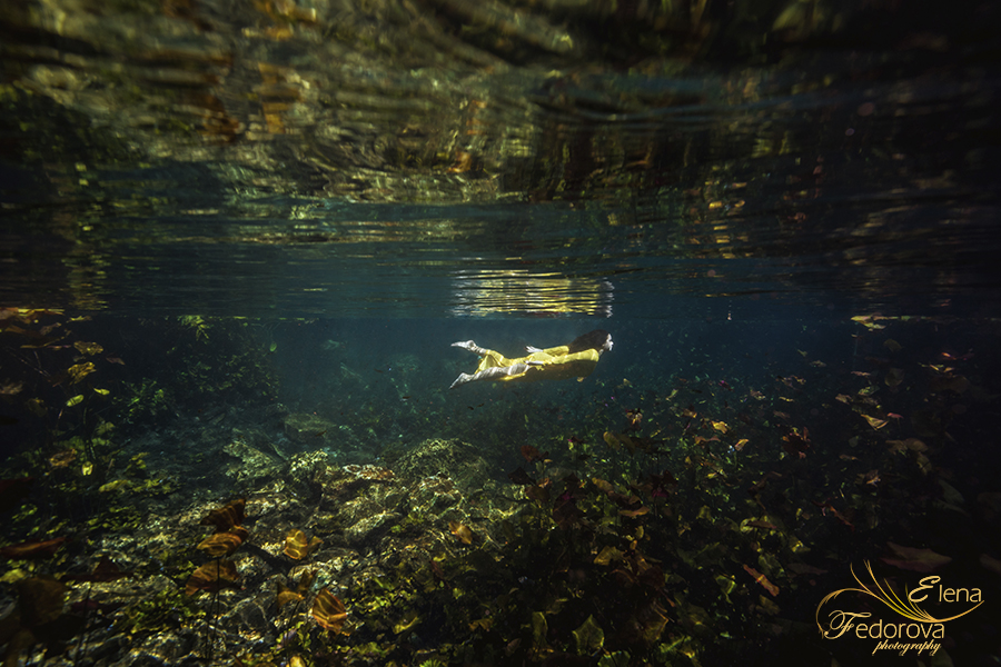 divign in cenotes mexico photography