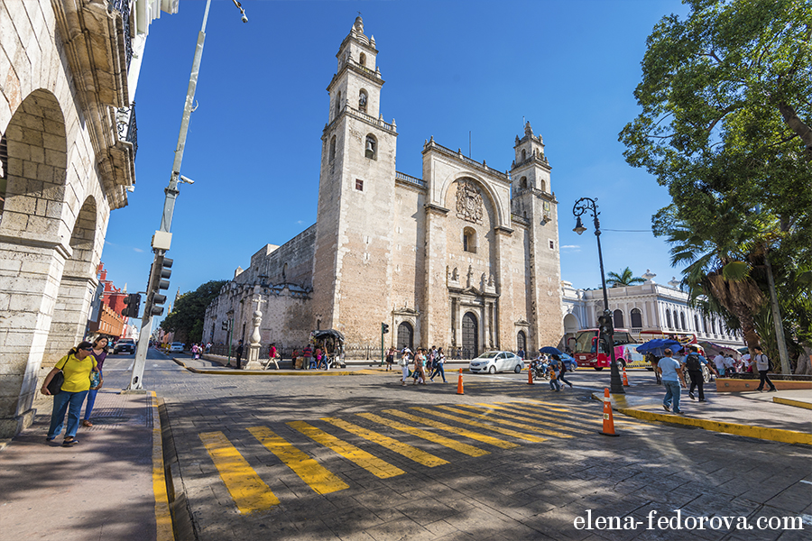 cathedral san Ildefonso