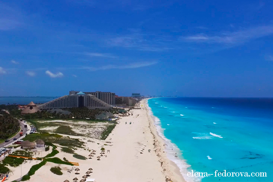 cancun beach delfines drone view