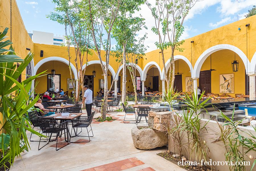gastronomia yucateca restaurant