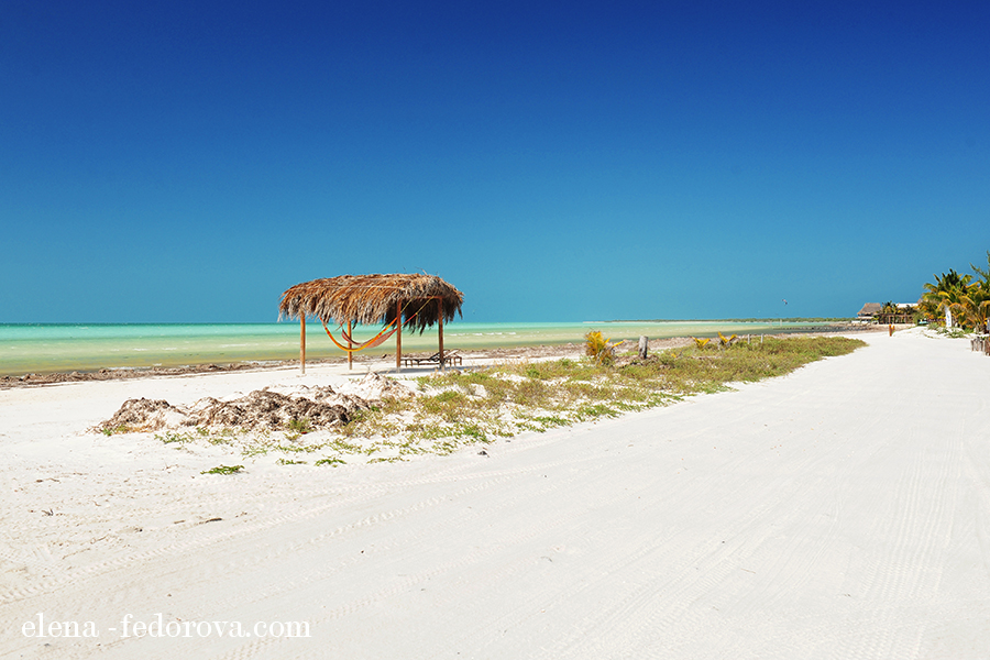 visit isla holbox near cancun
